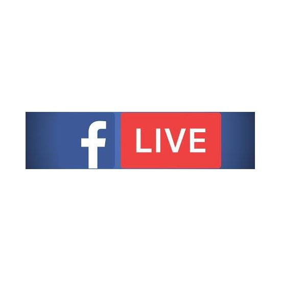 Facebook Vue Live
